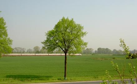 Der Rat der Gemeinde Schellerten hat den Bebauungsplan Schellerten Nord-West beschlossen und damit den Weg für neue Gewerbeansiedlungen freigemacht. Foto (c) Lindinger / Gemeinde Schellerten