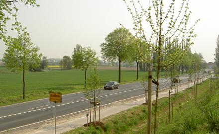 Der  Verwaltungsausschuss der Gemeinde Schellerten hat beschlossen, den Bebauungsplan Nr. 10-12 aufzustellen. Betroffen sind Grundstücksflächen zwischen dem Schießstand und der Bundesstraße 1 am Nordwestrand der Ortschaft Schellerten. Foto (c) Lindinger / Gemeinde Schellerten